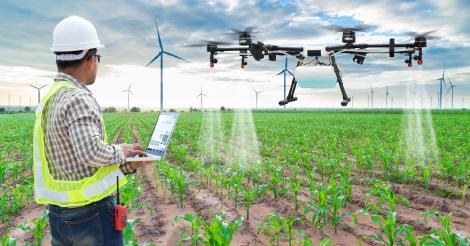 Comment l'IoT révolutionne le secteur agricole au Maroc ?